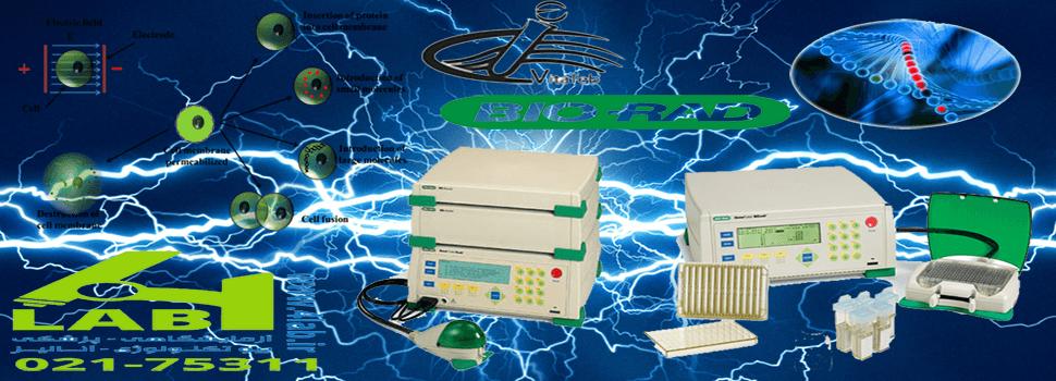 الکتروپوریشن electroporation